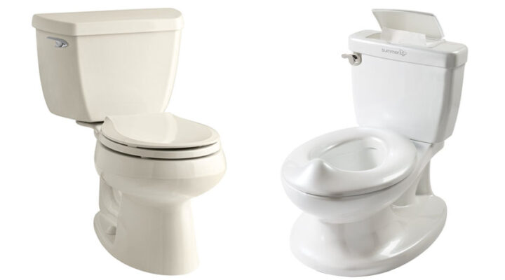 how to choose a good flushing toilet
